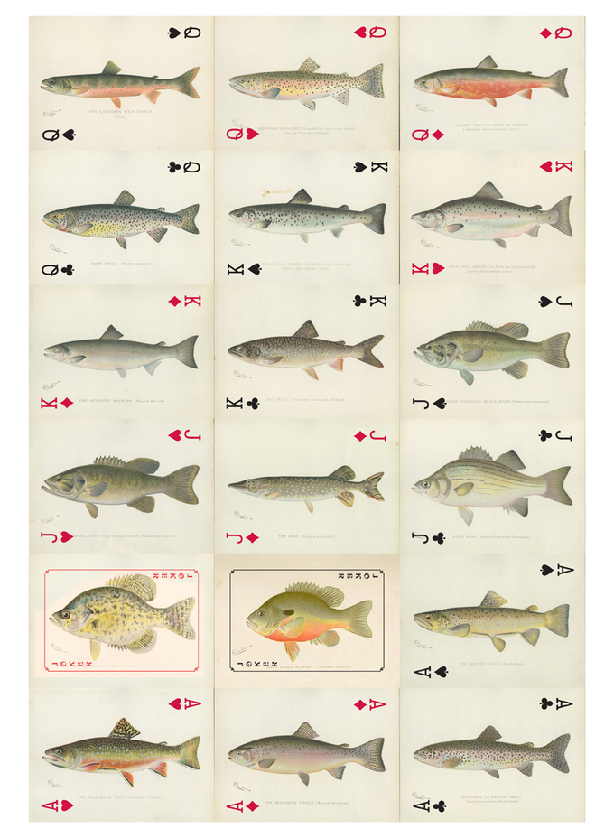 Sf denton game fish of new york art card deck by jeff for Max fish menu