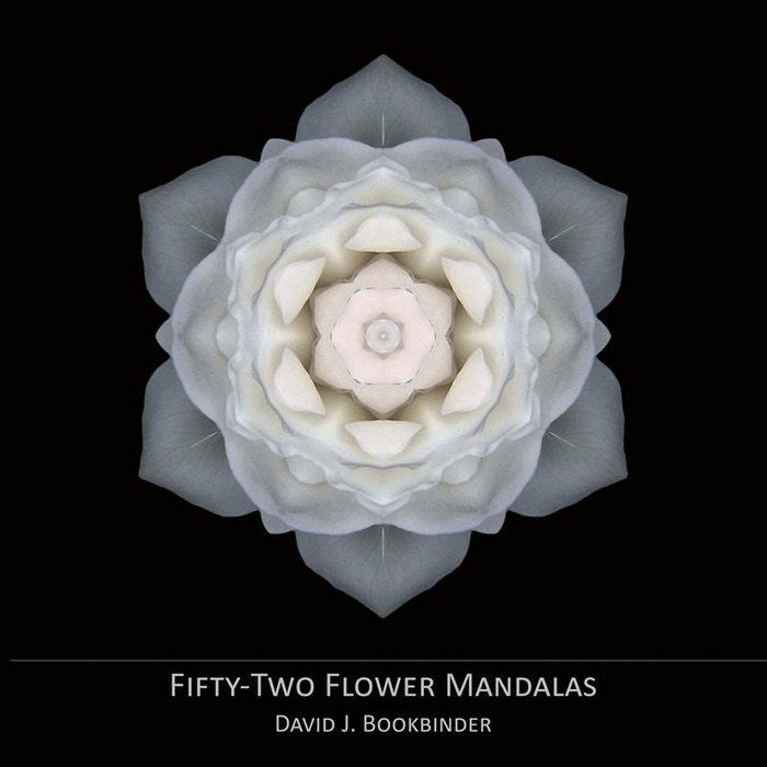 A meditative book of Flower Mandala images and related text that delves into 52 fundamental aspects of the human experience — and more!