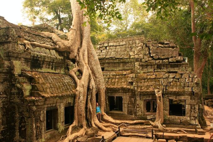 Ta Prohm Temple, Angkor Wat Archeological Area, Cambodia