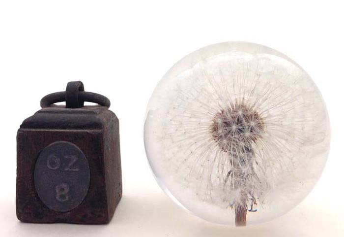 Uniquepaperweights— From glass paperweights to metal and in some cases weeds. They're all designed to help you organize your desk and look good doing it. They make great conversation pieces and the perfect gift.