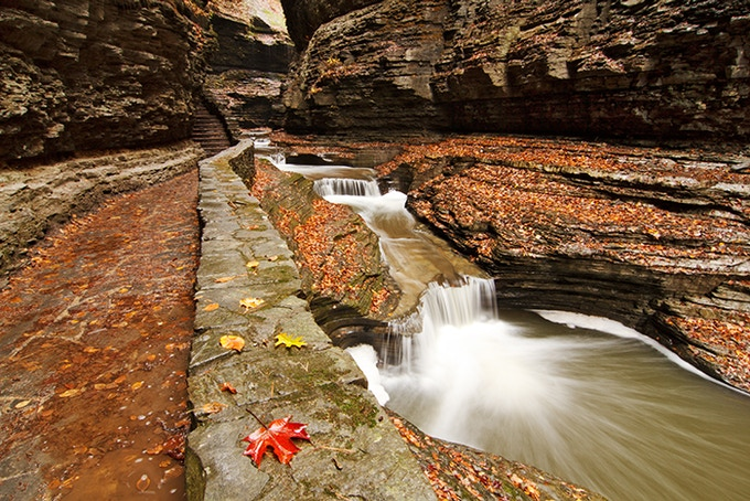 Watkins Glen and Finger Lakes, New York