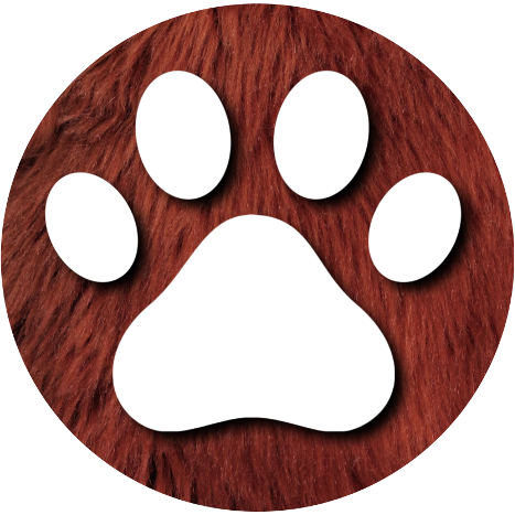Paw Print Button