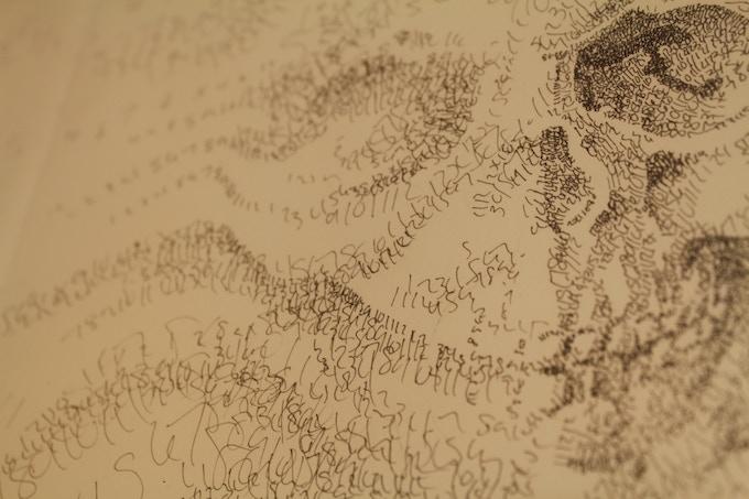 """""""Skull"""" Detail"""
