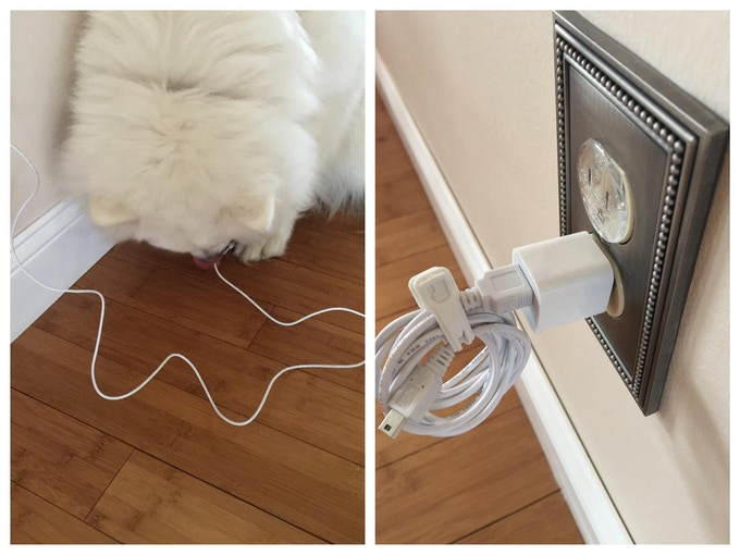 Keeps your pets safe from cord chewing.