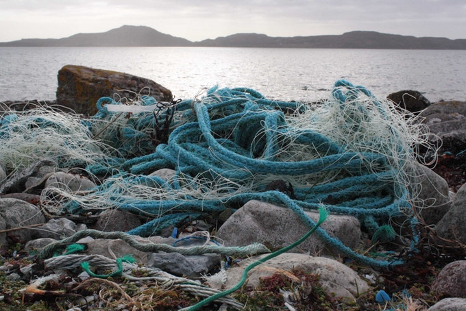 Commonly found commercial fishing litter