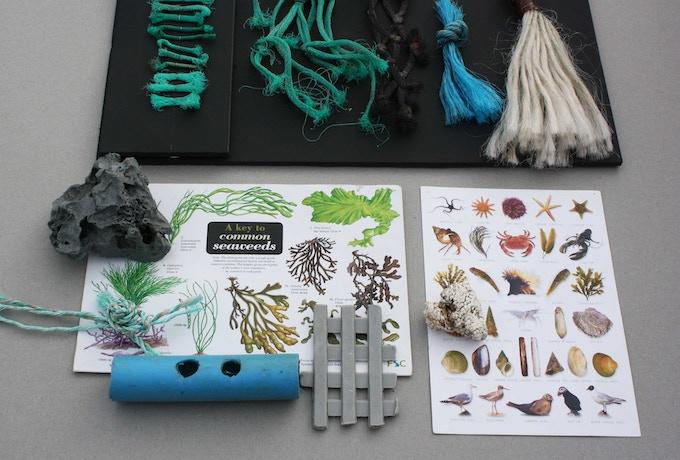 Guide to beach Litter - chart idea