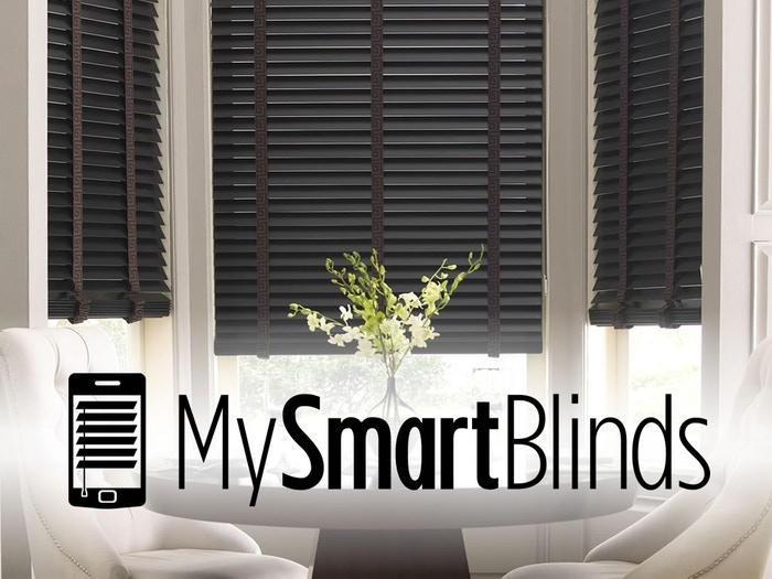 Automate your existing blinds with solar power, and control them with your phone or a smart switch.