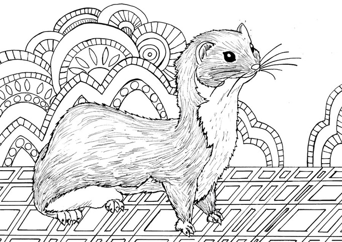 Animal Dreamers-Art Therapy Coloring Book For All Ages by