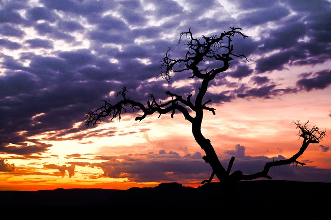 In contrast, a beautiful Sunrise in Toroweap, AZ.
