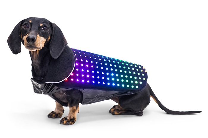 Keep your dog safe and have fun too! Introducing Disco Dog – The smartphone controlled LED dog vest.