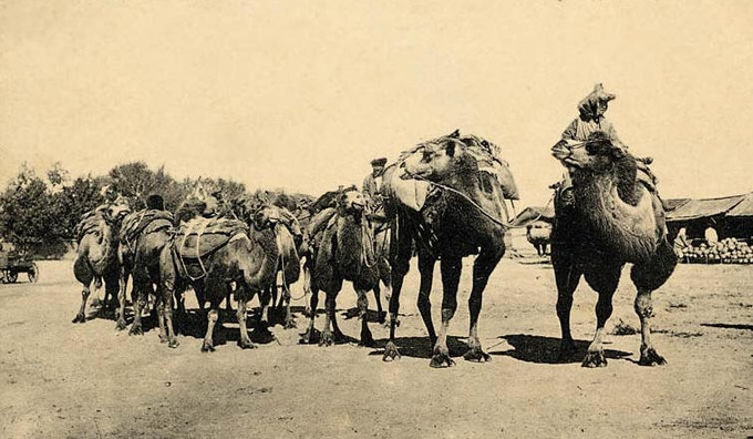 The principle method the traders used to travel and carry their goods along the Silk Road was the caravan. (Source: Silk Road Atlas, Washington University)