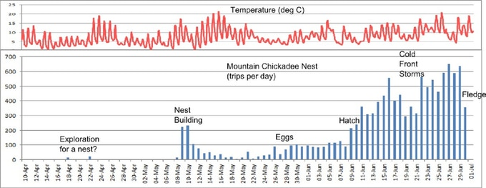 Data collected from a Chickadee nest in Montana.