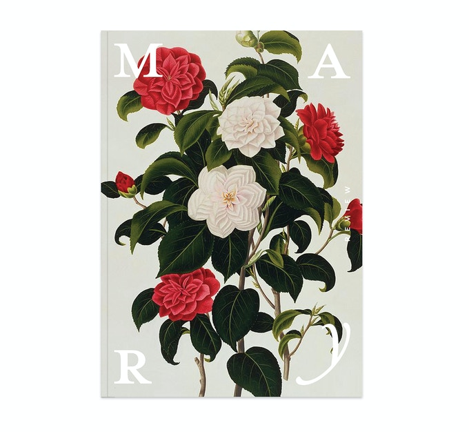 The magazine. (Mockup background image: Myrtle Leaved Camellia, by Clara Maria Pope)