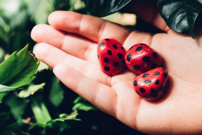 Our lovely hand made Ladybird paper weights.   Hand made paper weights. Be careful they don't scurry off...