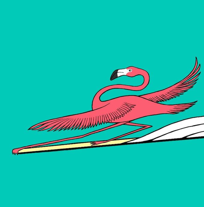 F - Flamingo