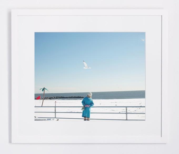 Snow Seagulls