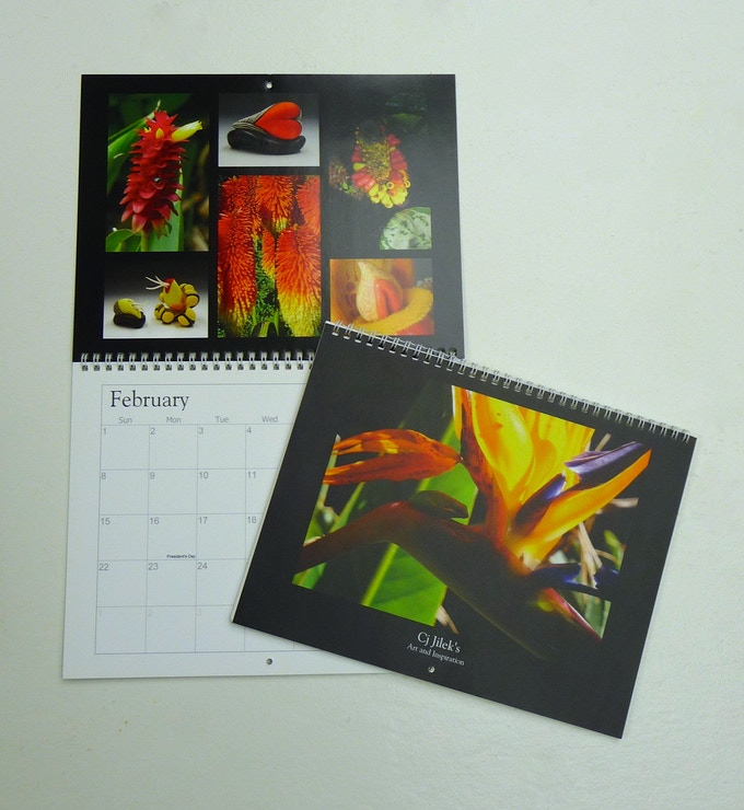 Reward #6. 2016 Wall Calendar with images of my ceramic sculptures and botanical research in Australia.