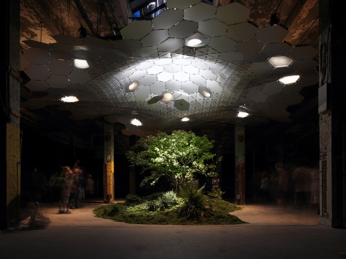 This is the final exhibition, featuring a live green space with a solar canopy and Lowline technology overhead.