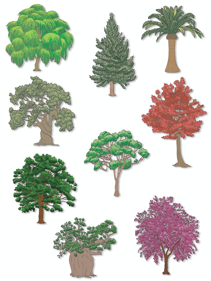 And here are some more trees.