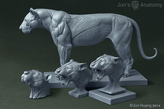 3d prints of the lion body, the lion's mouth-opened and mouth-closed heads, and the tiger's mouth-opened and mouth-closed heads.