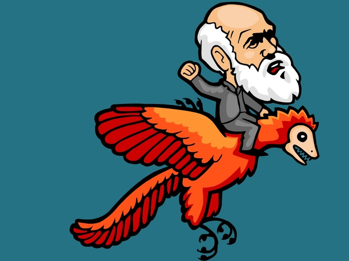 We teach the science of evolution through clear, friendly, entertaining animations.