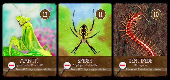 MANTIS, SPIDER & CENTIPEDE