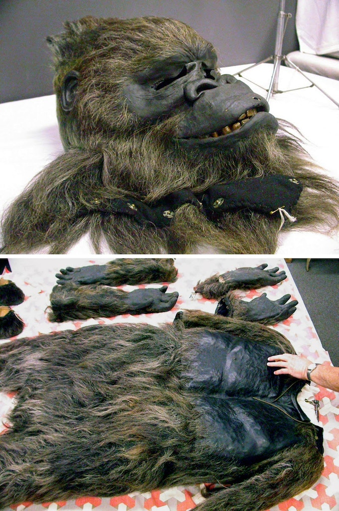Weber Auto Group >> GORILLA: A Short Film with a Gorilla Man and a Starlet by ...
