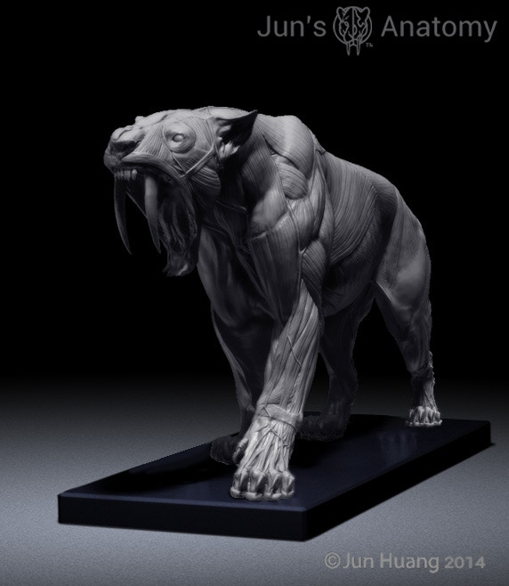 Perspective view of Smilodon in walking pose with Mouth-Open Head.