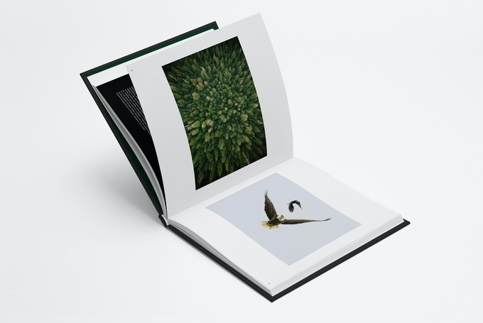 Full frame images with varying layout
