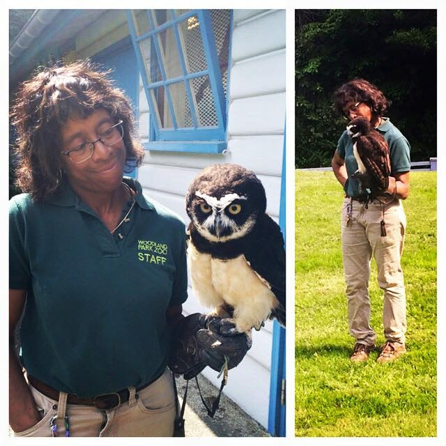 Behind the scenes of our Owl interview at the Woodland Park Zoo with Ros the Raptor Keeper, and Coba the Owl!