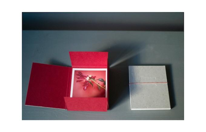 Technique : Impression numérique sur papier chiffon de 315 G, encre pigment. Dimension du tirage: 9 x 11 cm. Édition de 15 exemplaires + 3 épreuves d'artistes. Emboîtage : Sofi Eicher, Lausanne. Tirage signé et numérote