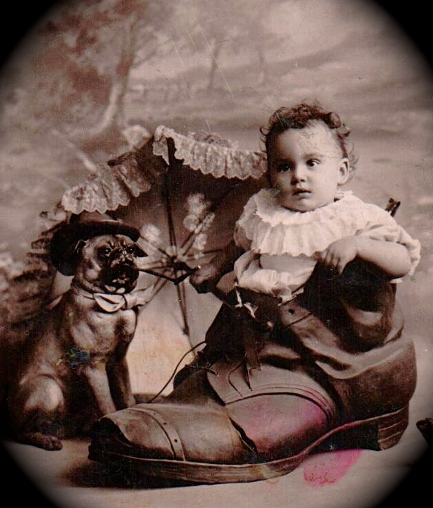 Adorable Baby and His Dog Photo