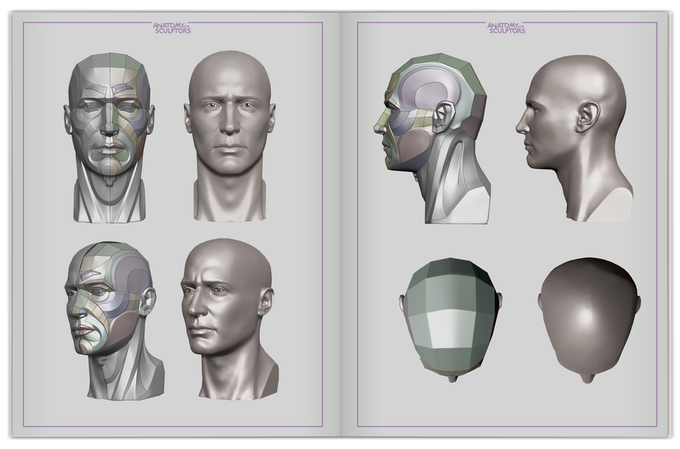 Head & Neck Anatomy: A Book With 3D Augmented Reality by