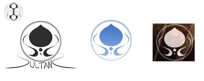 Some of the different logos we considered.