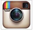 Survive Instagram