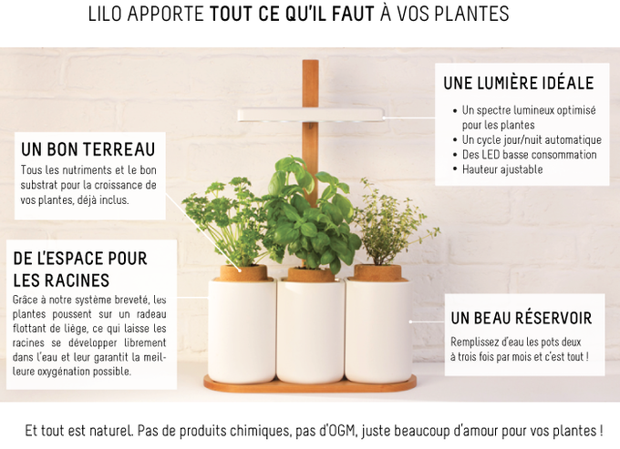 lilo the easy way to grow fresh herbs at home by pr t pousser kickstarter