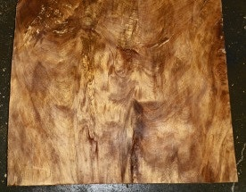 This wood is over 50,000 years old!