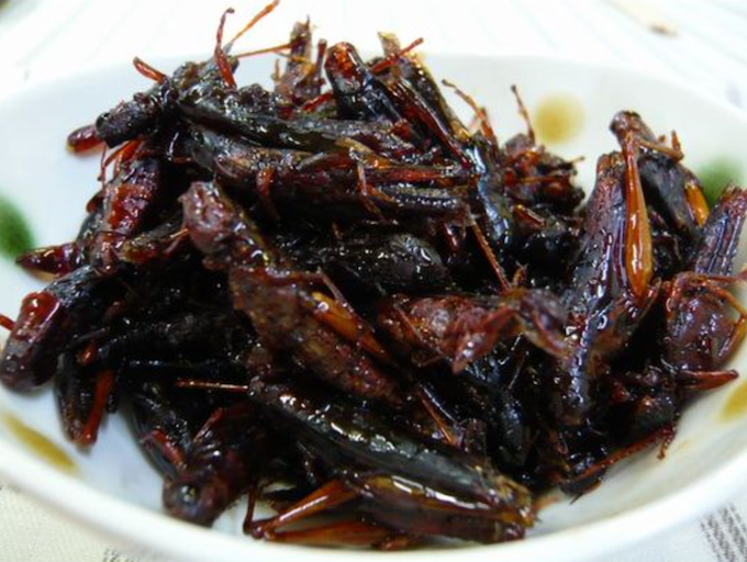 Delicious Japanese grasshoppers with soy, which we'll be serving at our events