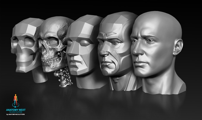 3D Augmented Reality models of male head lined up