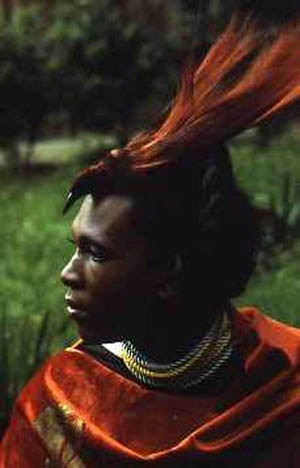 Portrait of Sylvester 1971