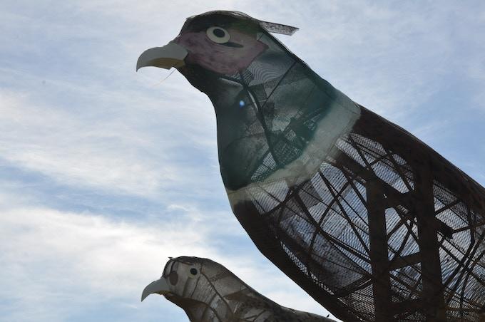 Pheasants on the Prairie (1996)