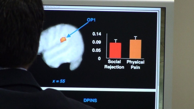 Looking at the connection between social pain and physical pain