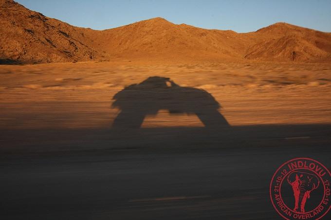 Indlovu racing through the Namib desert