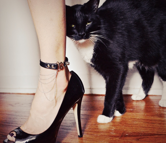 Leather & Sterling HerCuff Anklet (photobombed by Charlie :)