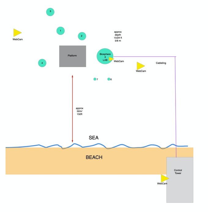 Simplified map of the Experiment Site in Noli