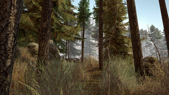 Here's a little look at some of the new terrain, trees and foliage. The game won't be in daylight, this is just so you can see some of the new assets.