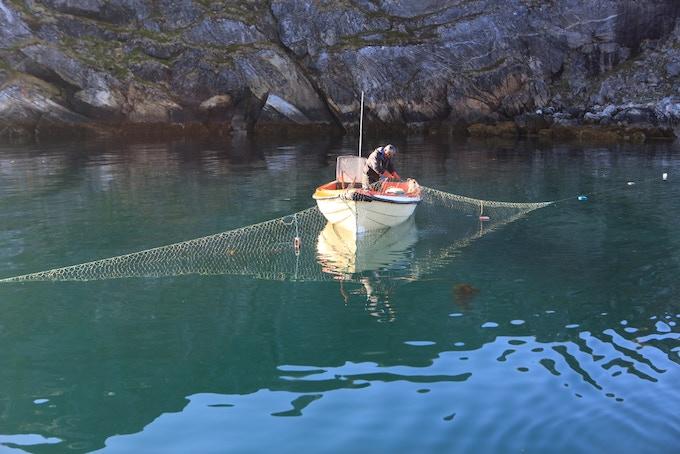 Salmon Net Fishermen, Greenland