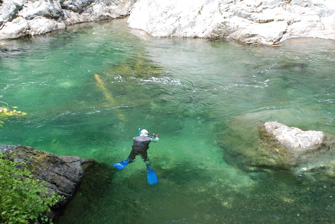 Rick Rosenthal Filming Salmon in Canada