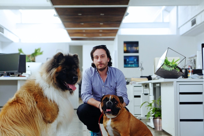 Chiko 'Bear', Founder Christopher Forcucci and Buddy the bulldog