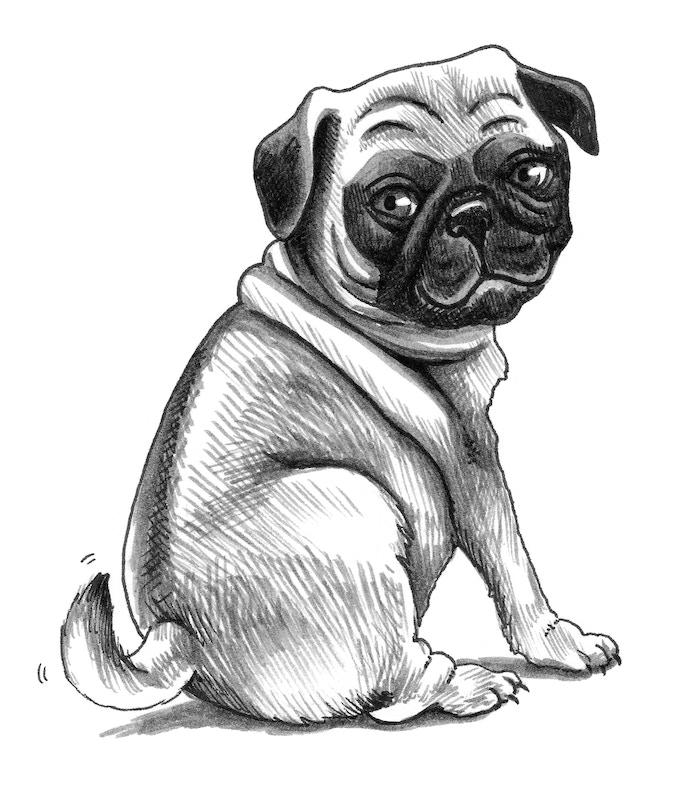 The Shameless Pug